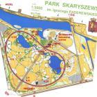IX Bieg Wedla w Parku Skaryszewskim